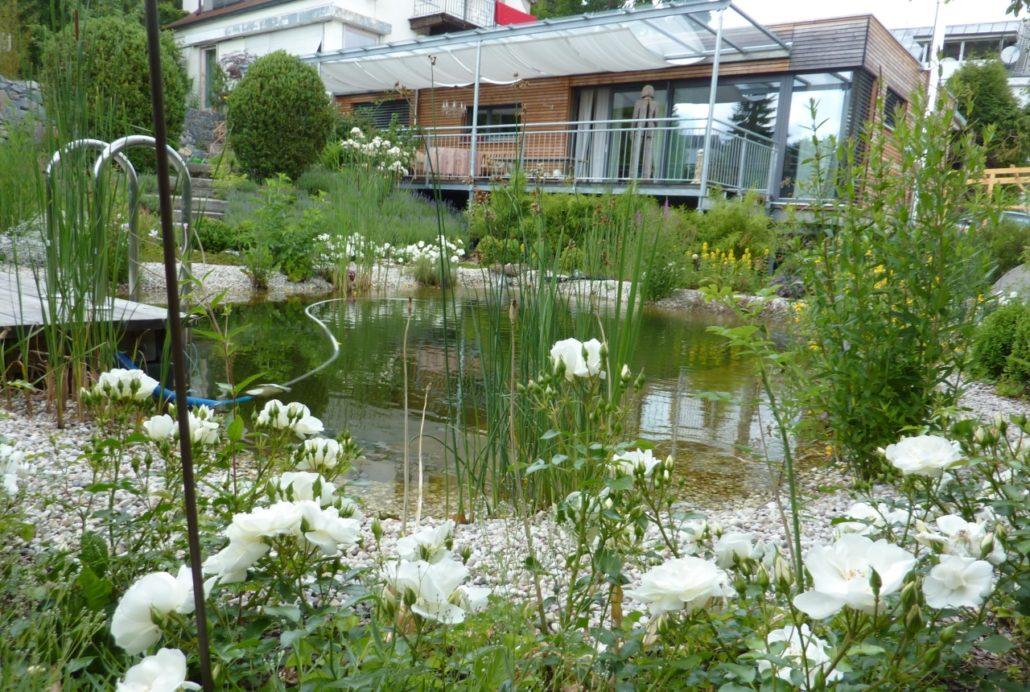 Teichbau Gartenbau Schmaußer GbR
